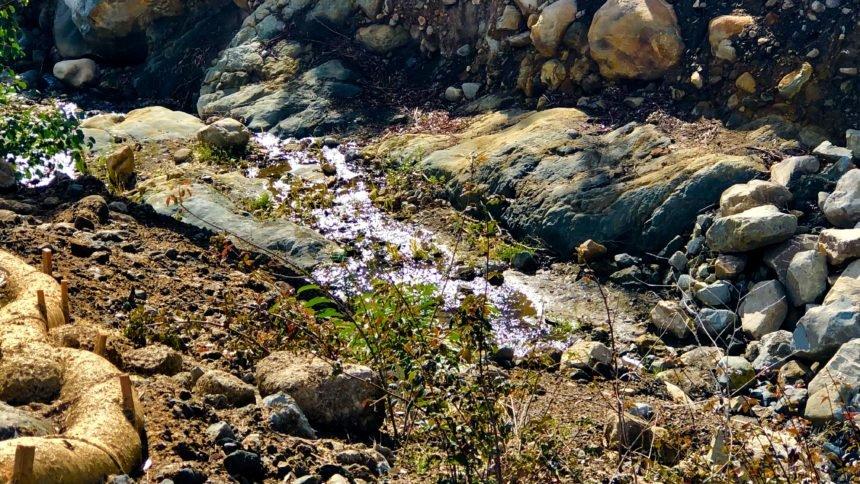 Montecito creek December 2019
