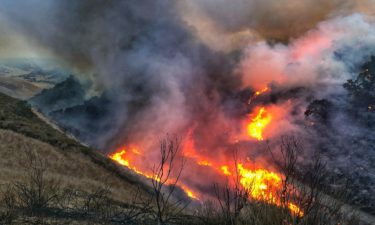 Los Alamos controlled burn