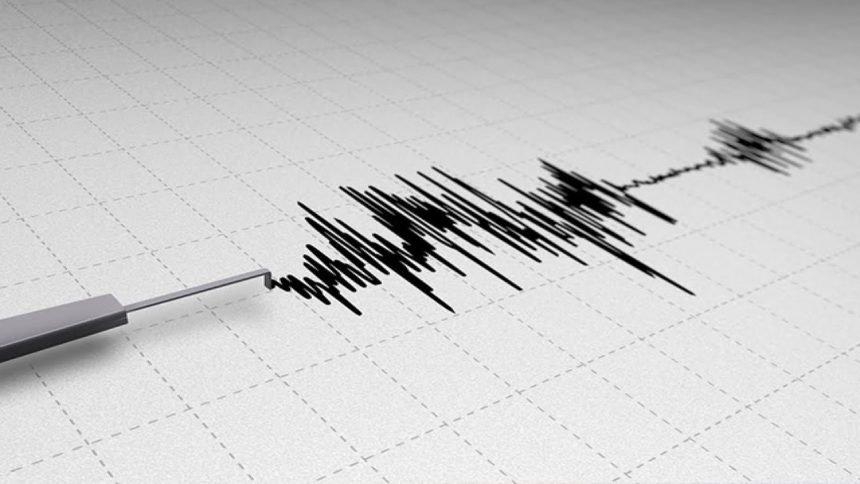 Earthquake seismic detector generic