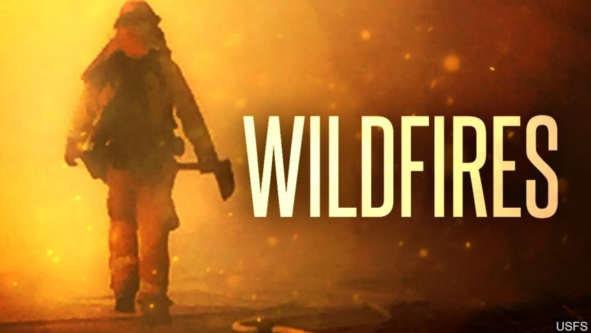 wildfires firefighter fires