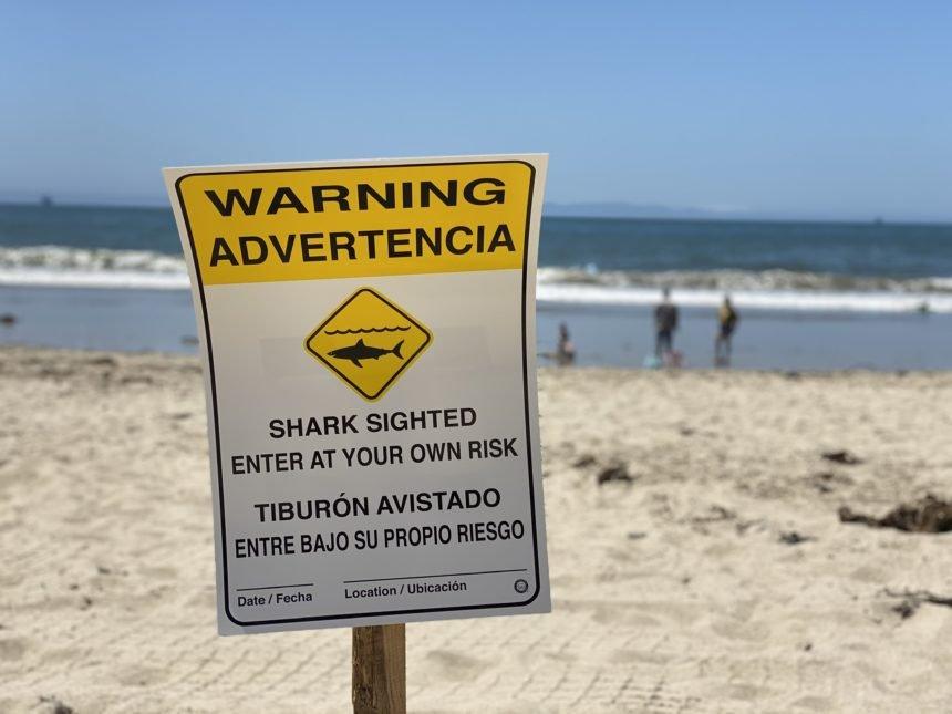carpinteria state beach shark sign
