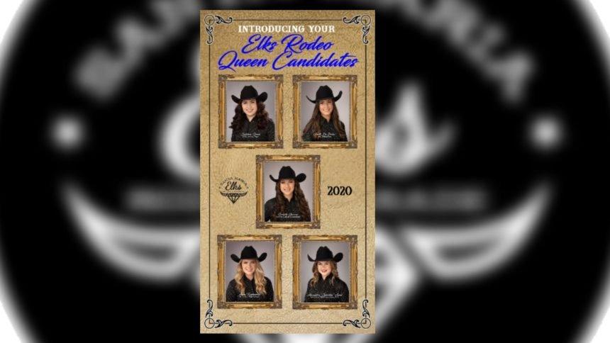 Elks Rodeo Queen Candidates