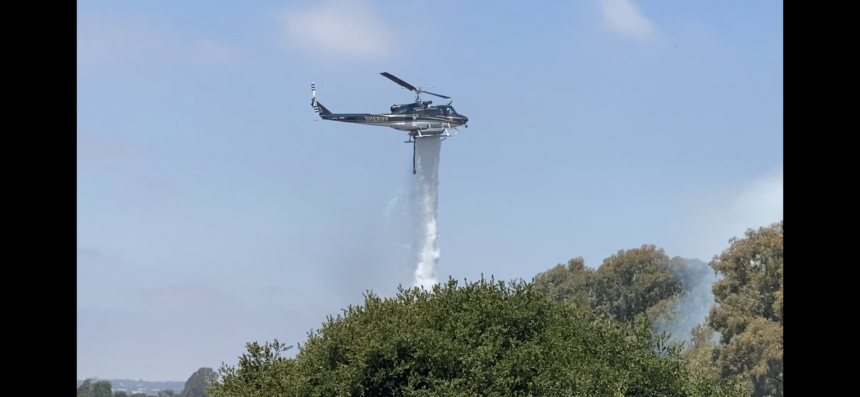 Mockingbird  Fire