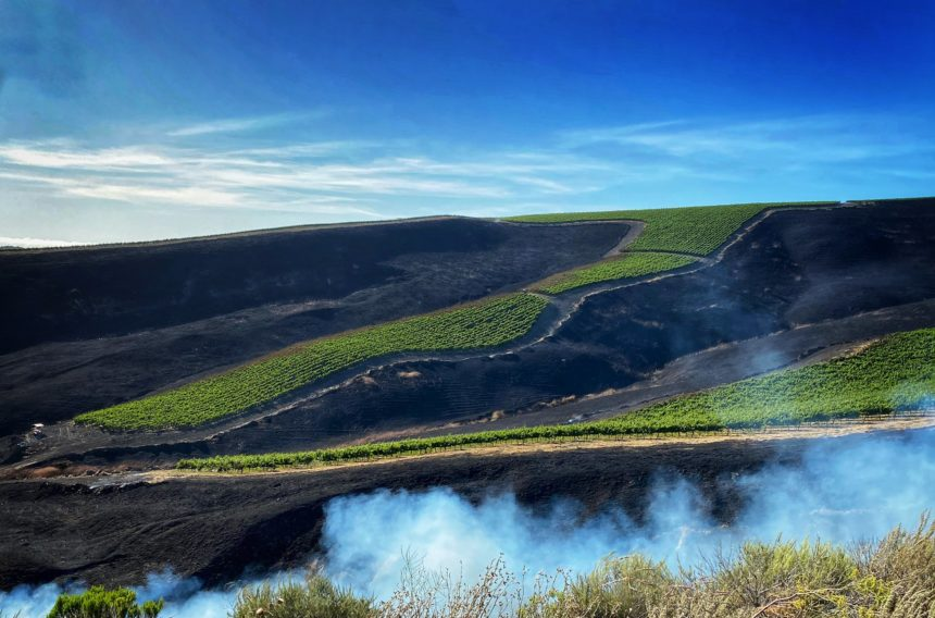drum fire farm protected