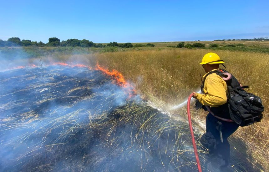 more mesa fire sbc