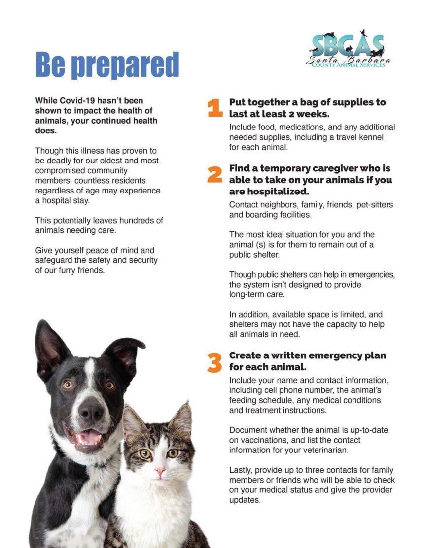 Pet Preparation Guide