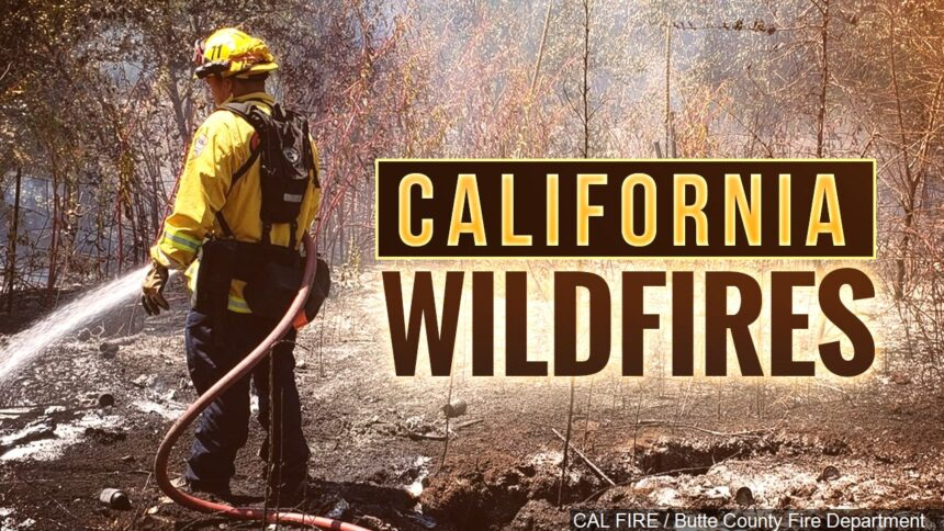 california wildfires mgn