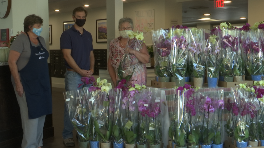 Westerlay Orchids 'Challenge' complete