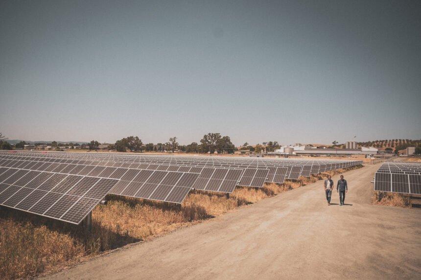 FW_Solar_Field