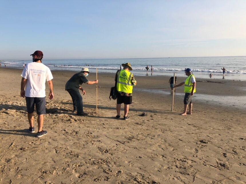 Beach Survey in Carpinteria