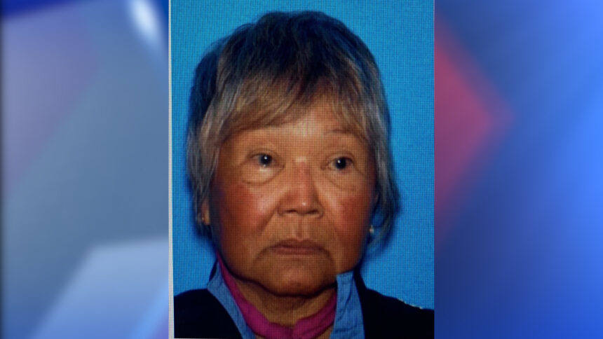 critical missing ventura woman
