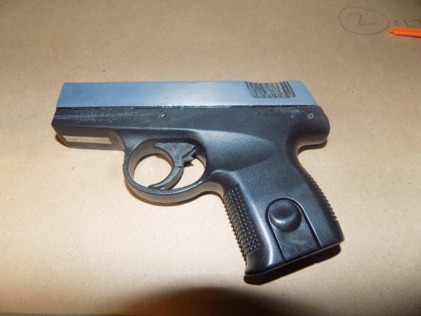 gun from domestic violence arrest SLO