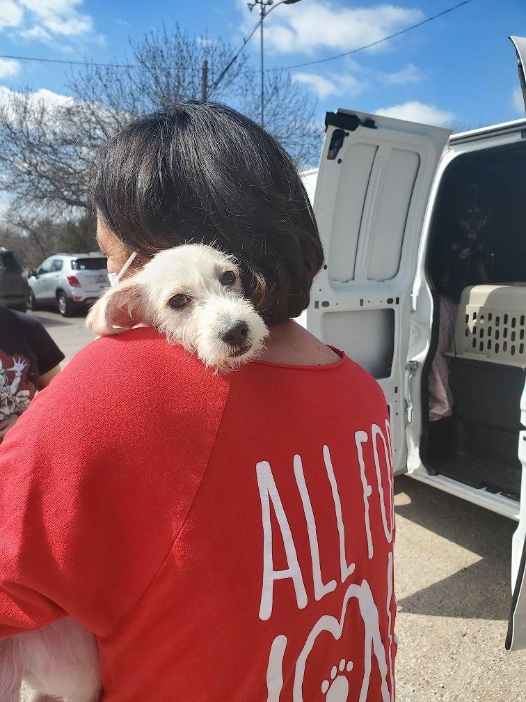 El Paso rescue