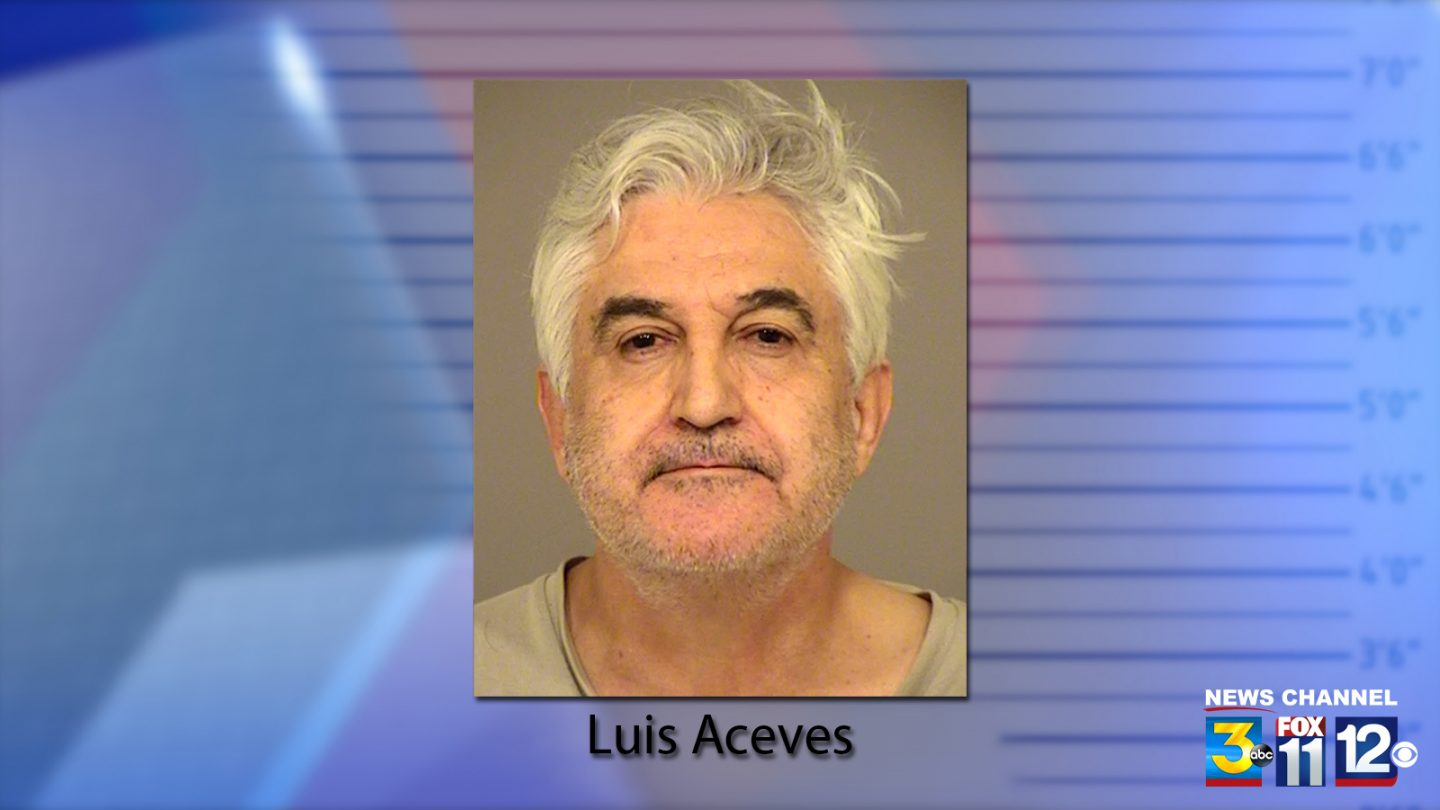 Luis Aceves has pleaded guilty to voluntary manslaughter in the death of his brother