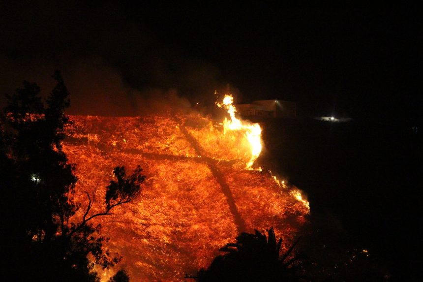 Loma Fire gallery picture 9