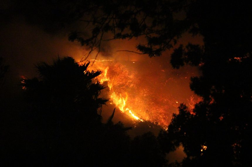 Loma Fire gallery picture 8