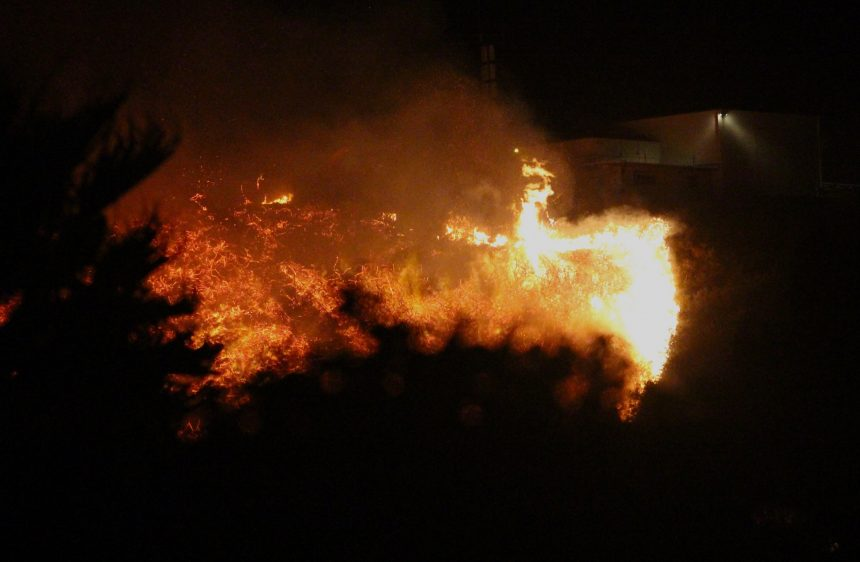 Loma Fire gallery picture 7