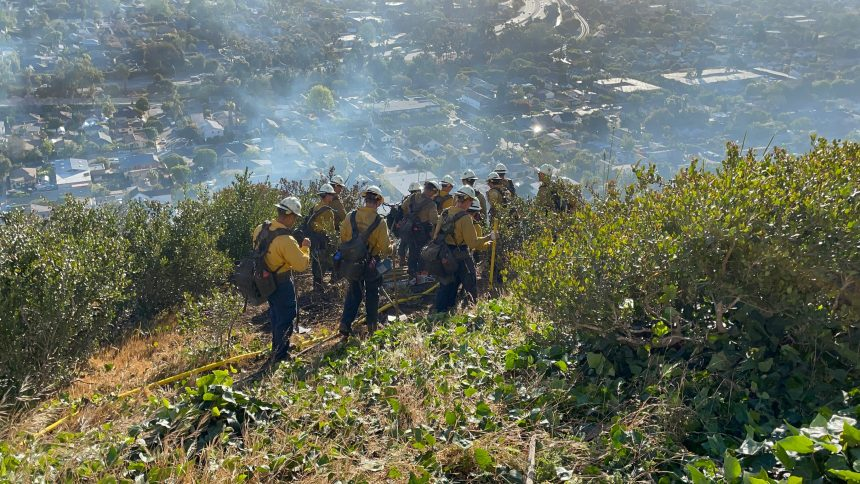 Loma Fire gallery picture 17