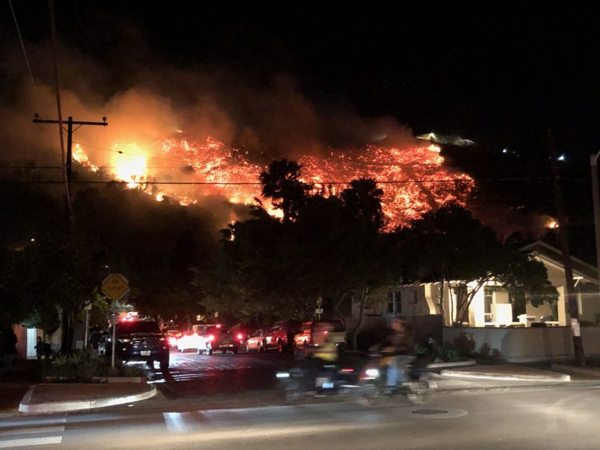 Loma Fire gallery picture 3