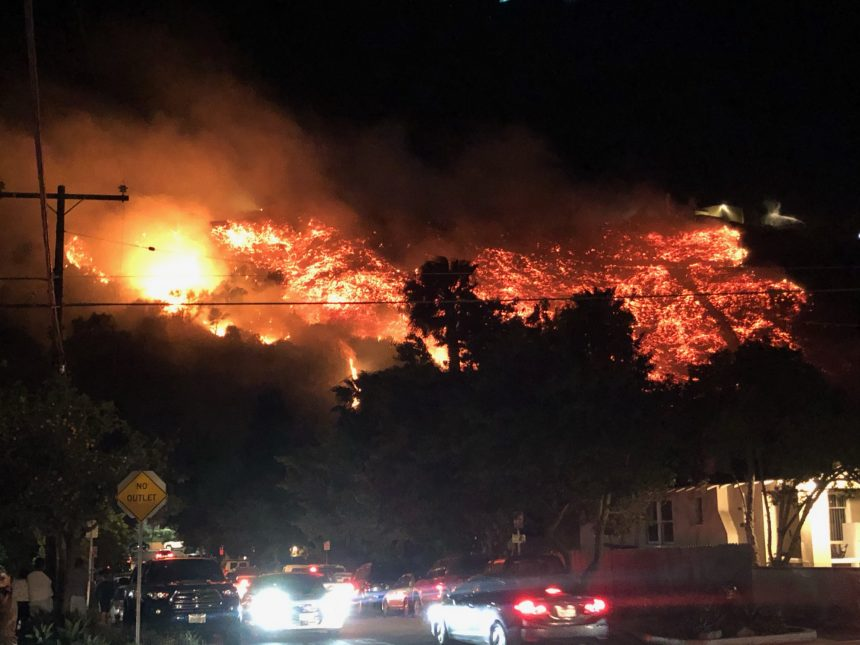 Loma Fire gallery picture 1