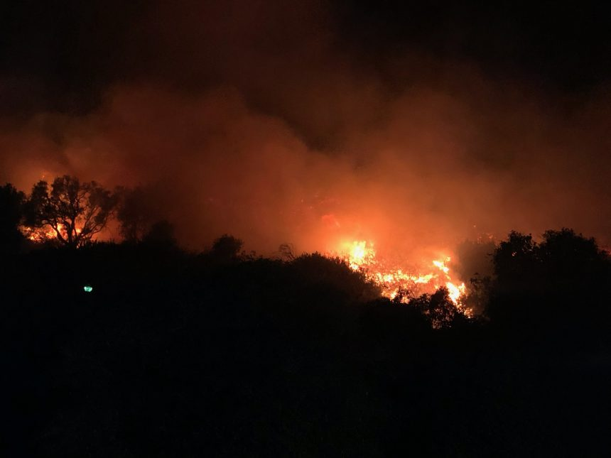 Loma Fire gallery picture 6
