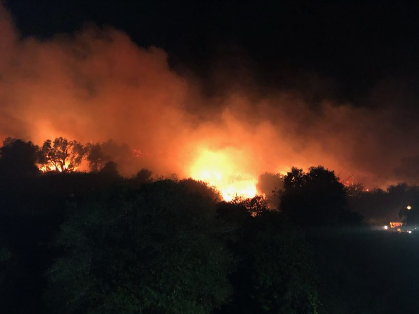 Loma Fire gallery picture 5