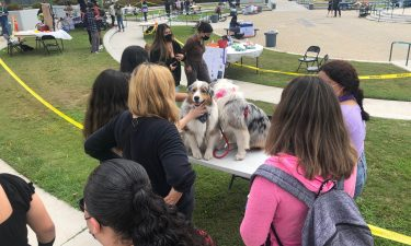 Theraphy Dogs at Oxnard Union High School District