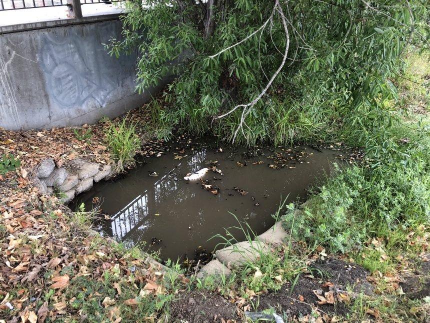 sewage leak in slo 060621 1