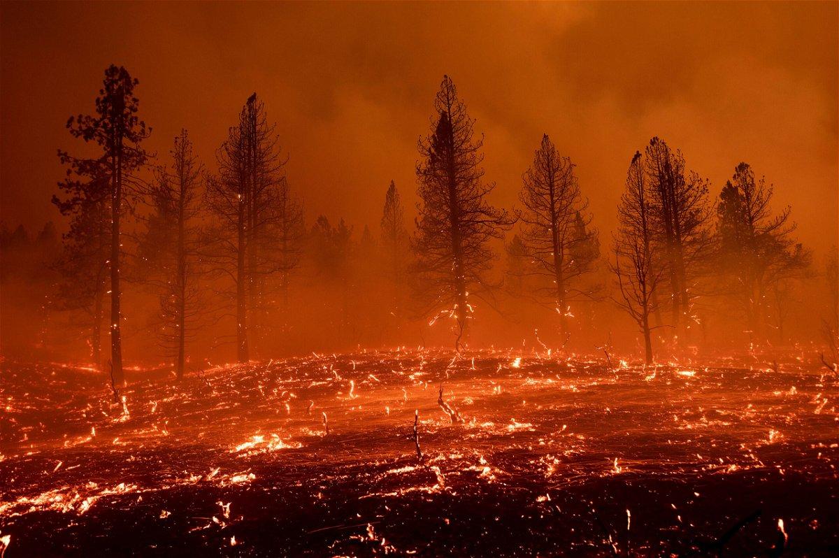 <i>Noah Berger/AP</i><br/>Embers blow across a field as the Sugar Fire