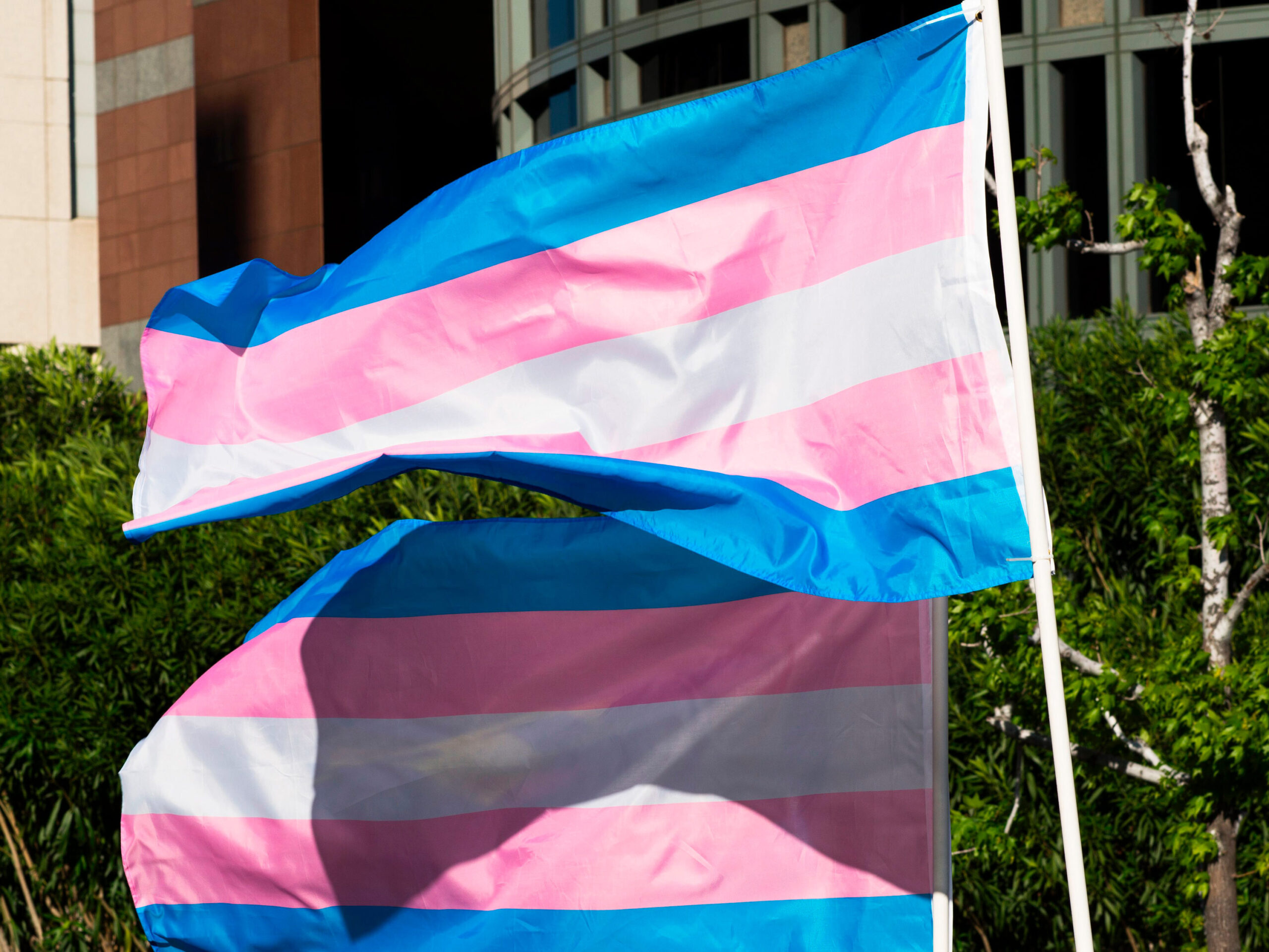 <i>ROBYN BECK/AFP/Getty Images</i><br/>A federal judge on July 21 temporarily blocked Arkansas' ban on gender-affirming treatment for transgender youth from going into effect later this month.