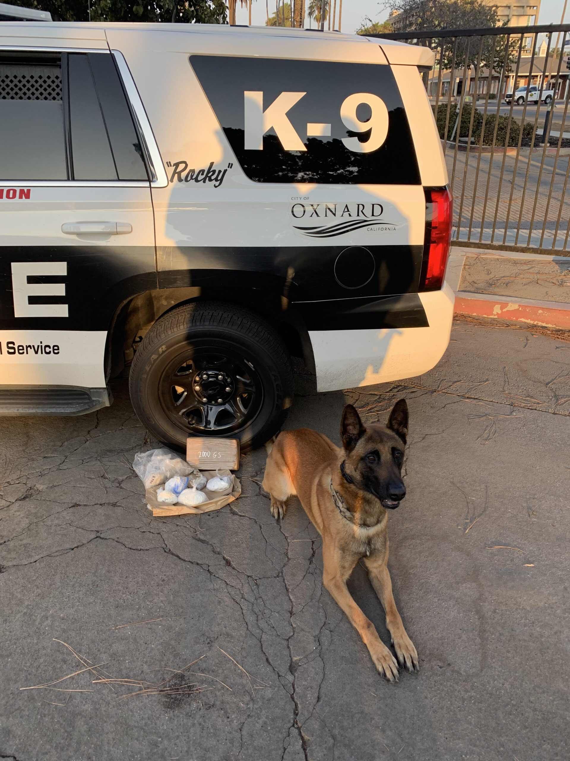 K9 Rocky after locating a large amount of fentanyl inside a vehicle.