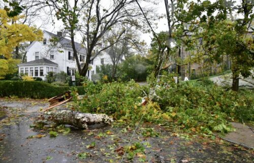Cohasset Police say historic trees were toppled and several boats were aground in Cohasset Harbor. Cohasset is a town in Norfolk County and is about 22 miles from Boston.